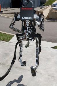 O Exoskeleton